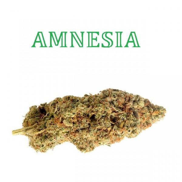 740Greens - Amnesia CBD Blüten