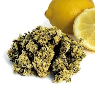 Lemon Haze CBD Blüten 15% CBD-Gehalt