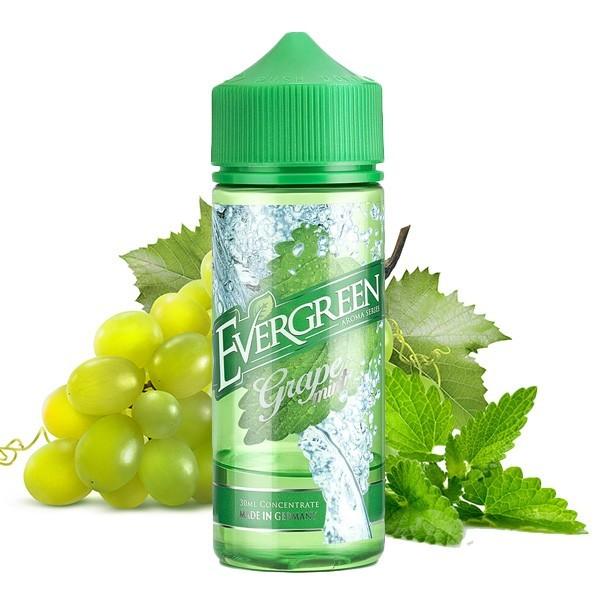 Evergreen - Grape Mint